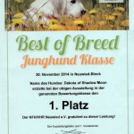 Best of Breed 30.11.2014