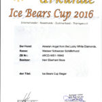 Ice Bear Cup 2016 Akeelah